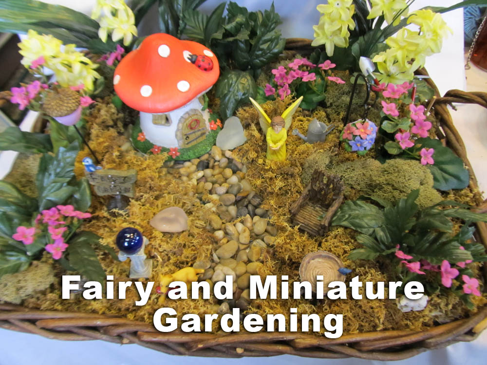 Fairy and Miniature Gardening